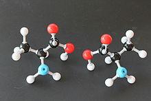 datowanie aminokwasów pełne kempingi w stanie Michigan
