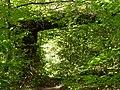 La Porte de la Forêt enchantée - panoramio.jpg
