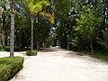 La palmeraie de elche - panoramio (29).jpg