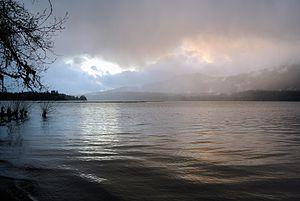 Grays Harbor County, Washington - Lake Quinault