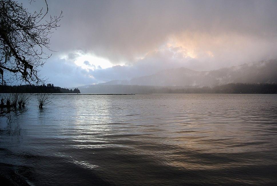 Lake Quinault Mist