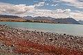Lake Tekapo-17 (8303421248).jpg