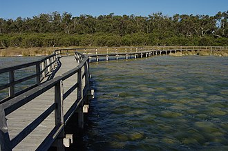 Lake Clifton, Western Australia - Yalgorup National Park observation walkway