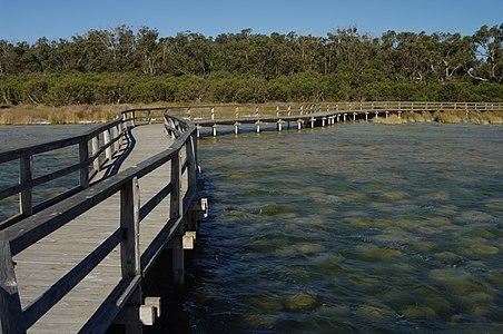 Lake clifton gnangarra 03.jpg