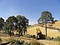 Landscape - panoramio (41).jpg