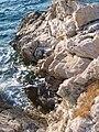 Landscapes of Croatia-01.jpg