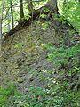 Landschaftsschutzgebiet Gestorfer Lößhügel - Steinbruch (11).JPG