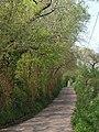Lane to Pennymoor - geograph.org.uk - 2405151.jpg