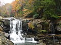 Laurel Creek Falls-27527.jpg
