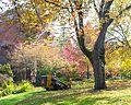 Leaf Vacuumer-1.jpg