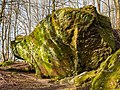 Lichtenstein Felsenlabyrinth-20200315-RM-164938.jpg