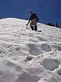 Licoln Peak - panoramio.jpg