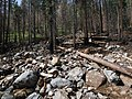 Little Bear Trail flood damage (9361770748).jpg