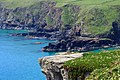 Lizard Peninsula , Coastline - panoramio.jpg