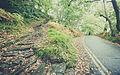 Loch Lomond (15740011588).jpg