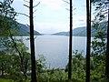 Loch Lomond - geograph.org.uk - 837615.jpg