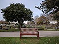 Long shot of the bench (OpenBenches 2769-1).jpg