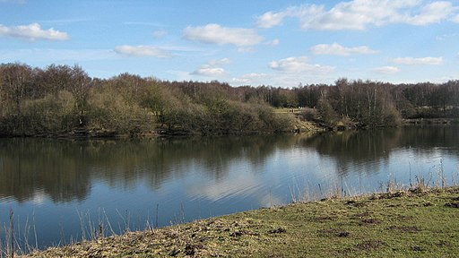 Looking towards the meadow across the lake - geograph.org.uk - 1738426