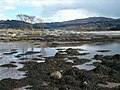 Low tide on Loch Caolisport - geograph.org.uk - 145548.jpg