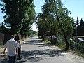 Lubostroń - panoramio (7).jpg