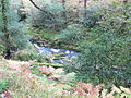 Lugduff Brook above the Poulanass Waterfall - geograph.org.uk - 1549536.jpg