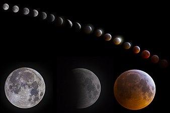 Lunar eclipse composite.jpg