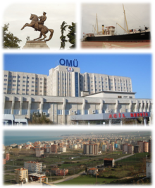 Lupus-Collage Samsun.png