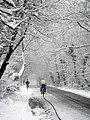 Lye Lane in the snow - geograph.org.uk - 1524436.jpg