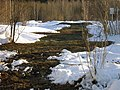 Lyovintsy, Kirovskaya oblast', Russia, 612079 - panoramio (122).jpg