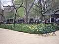Madison Square Park video installation.JPG