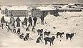 Mail team leaving Circle City for Ft. Gibson, Alaska, c.1900.jpg