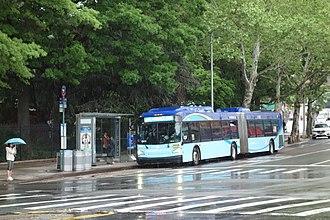 Queens Botanical Garden - A Jamaica-bound Q44 SBS bus stopped in front of the Queens Botanical Garden