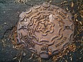 Main sewage manhole cover near church, Woolsthorpe - geograph.org.uk - 280357.jpg