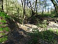 Malá Chuchle, potok a náhon rybníčku (01).jpg