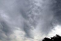 Mammatus clouds 3-6-08 1.jpg