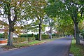 Manor Rd Dorchester - geograph.org.uk - 1000079.jpg