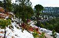 Margalla-Hills,-Tilla-Charouni.jpg