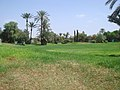 Marrakesh - 2008 - panoramio (68).jpg