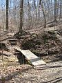 Meeman-Shelby Forest State Park Shelby County TN 2014-02-23 009.jpg