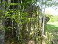 Menhir de Courtevrais - 08.JPG