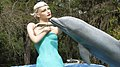 Mermaid Dolphin Lover - panoramio.jpg
