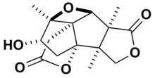 Skeletal structure of merrilactone A