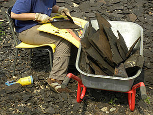 Shale - Splitting shale with a large knife to reveal fossils