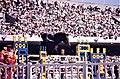 Mexico 68 Equestrian event.jpg