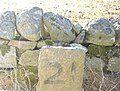 Milestone near Nether Mains - geograph.org.uk - 1130938.jpg