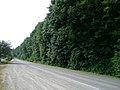 Mill Bay Road, Mill Bay, BC, Canada - panoramio.jpg