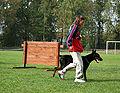 Mistrzostwa Śląska psy obrończe 2006 przy nodze.jpg