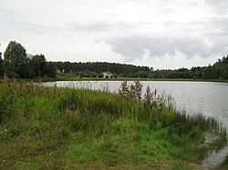 Miszewko - panoramio - Vilk V.jpg
