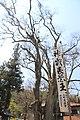 Miyagawa, Chino, Nagano Prefecture 391-0013, Japan - panoramio (8).jpg