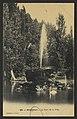 Montélimar - Le parc de la ville (34405593486).jpg